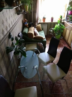 Стеклянный стол Corwin Bis